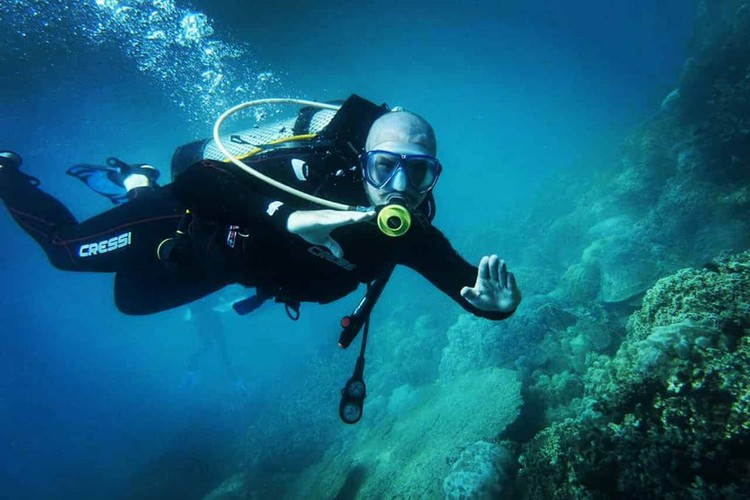 leading vietnamese locations to view coral reefs hinh 3
