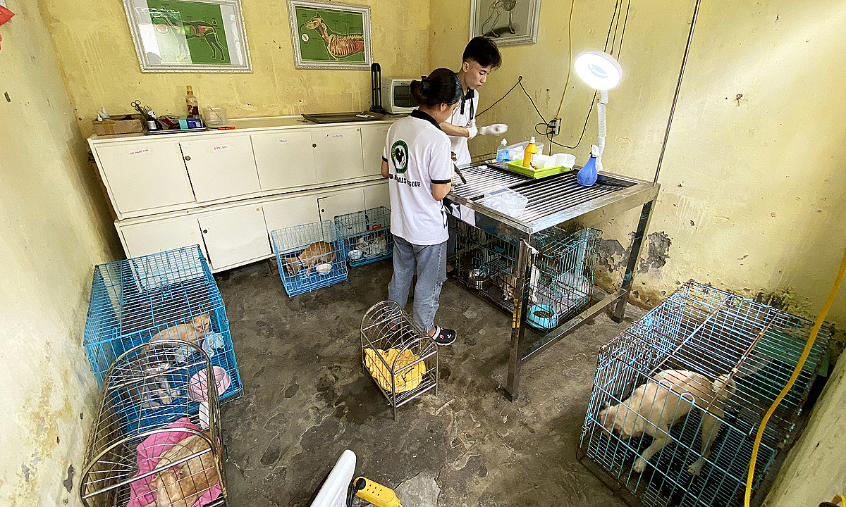 Dogs and cats are put into individual cages inside the house. Photo by VnExpress/Huyen Vu.
